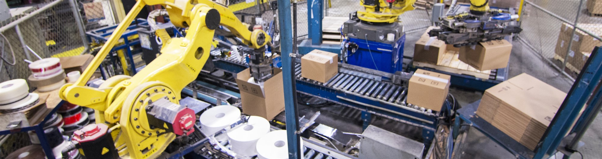 AUTOMATIC PACKAGING LINES (IT)