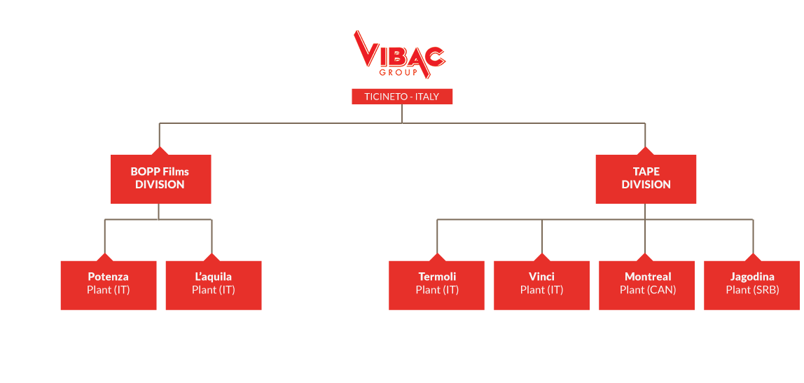 Vibac global structure